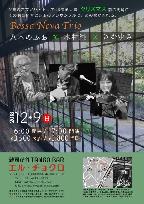 12.9 Bossa Trio