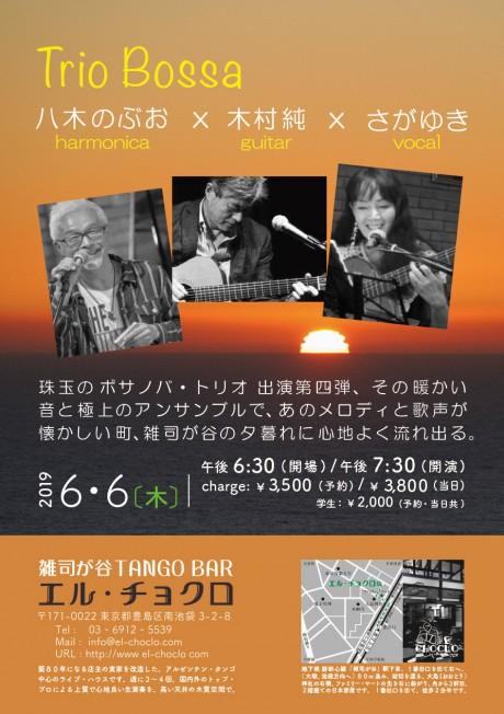 6.6 Trio Bossa